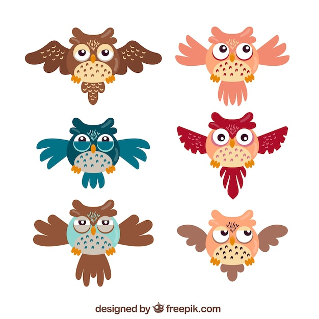 Cartoon owl pack of six