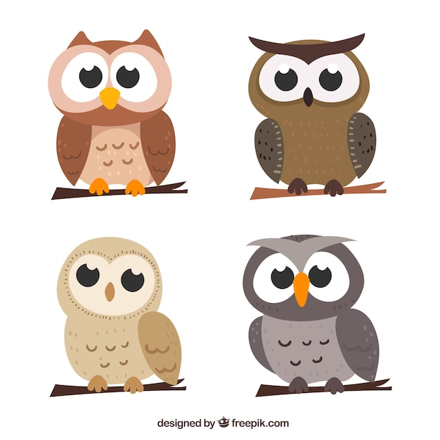 Cartoon owl set of four Free Vector
