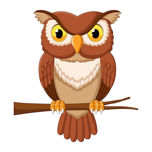 Premium Vector Cartoon Owl On Tree Branch Watch online and download the owl house cartoon in high quality. https www freepik com profile preagreement getstarted 7298095