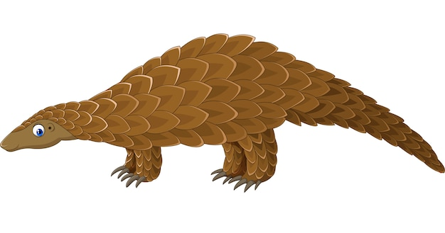Cartoon pangolin isolated on white background Premium Vector