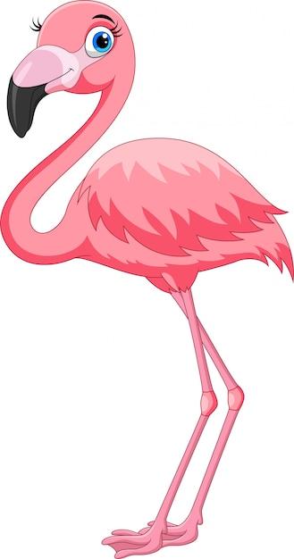 Premium Vector   Cartoon pink flamingo