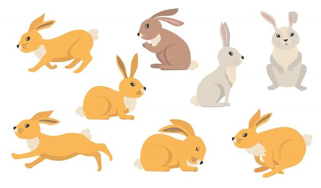 Набор мультяшных кроликов Бесплатные векторы