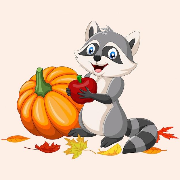 Cartoon raccoon holding red apple and pumpkin Premium Vector