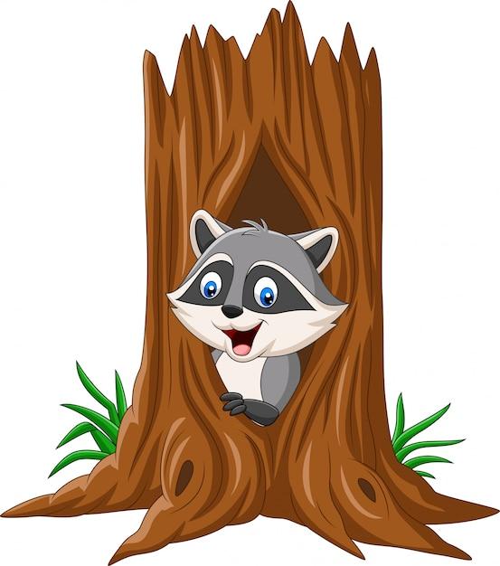 Cartoon raccoon sitting in hollow of a tree Premium Vector
