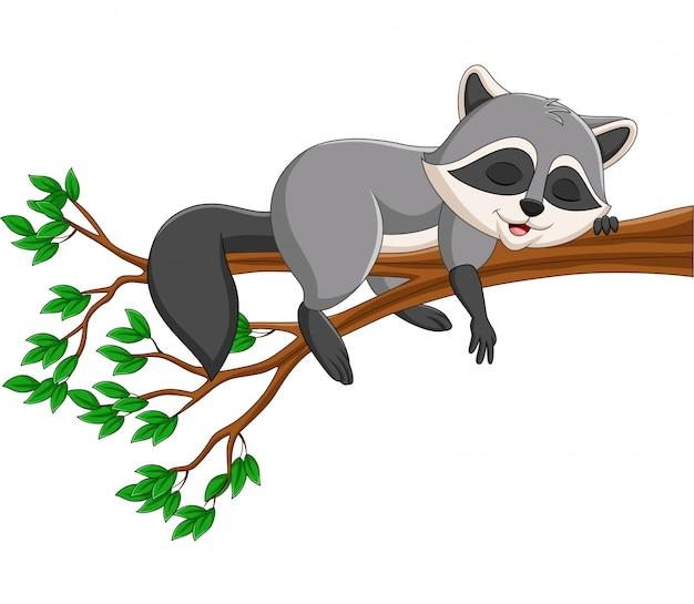 Мультяшный енот спит на ветке дерева Premium векторы