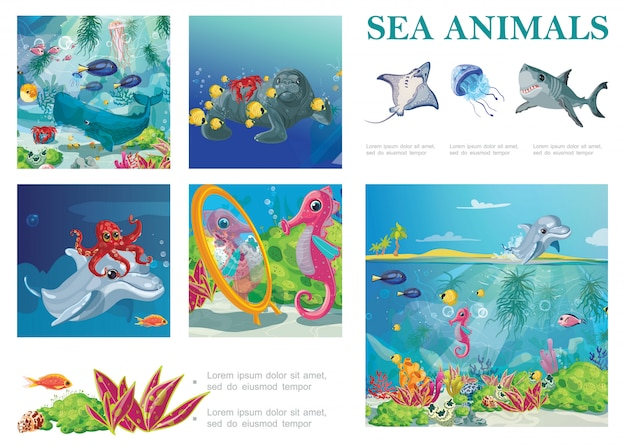 Cartoon sea life composition with stingray shark jellyfish seal seahorse octopus fishes dolphin crab seaweeds and corals Free Vector
