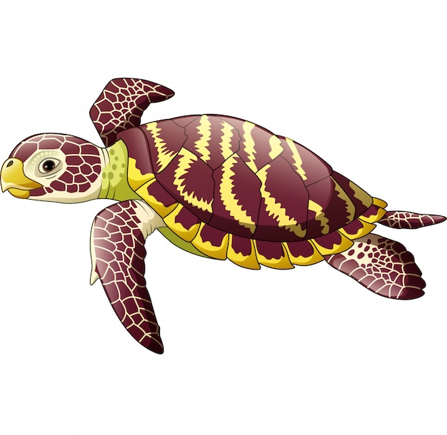 Cartoon sea turtle isolated on white background Premium Vector