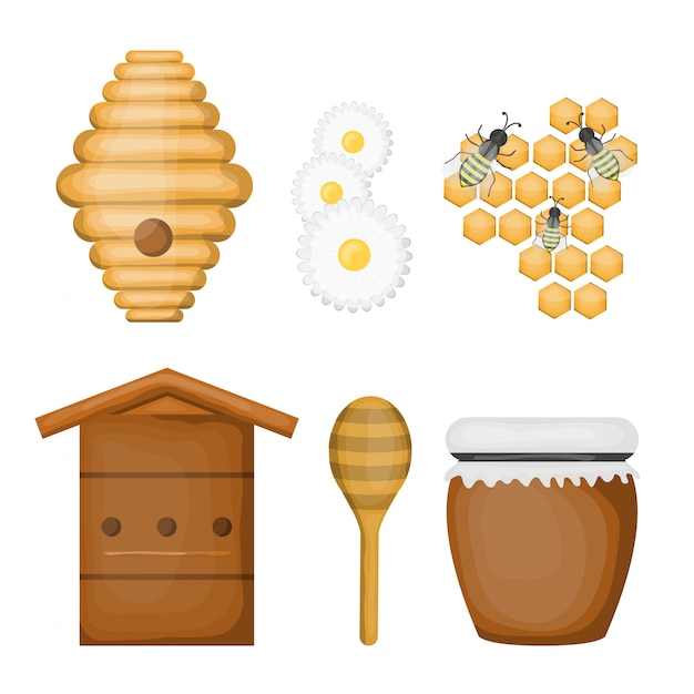 Cartoon set of honey products and equipment on white background. Premium Vector