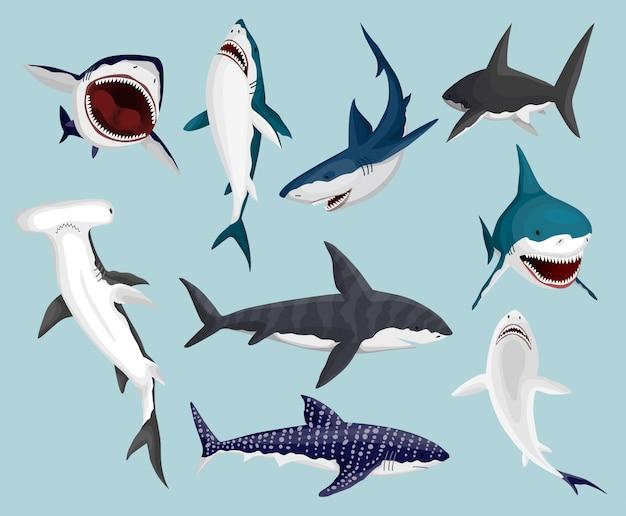 Мультяшные акулы. страшные челюсти и плавающие злые океанские акулы. большие опасные морские хищники. иллюстрация морской дикой природы. набор диких рыб Premium векторы