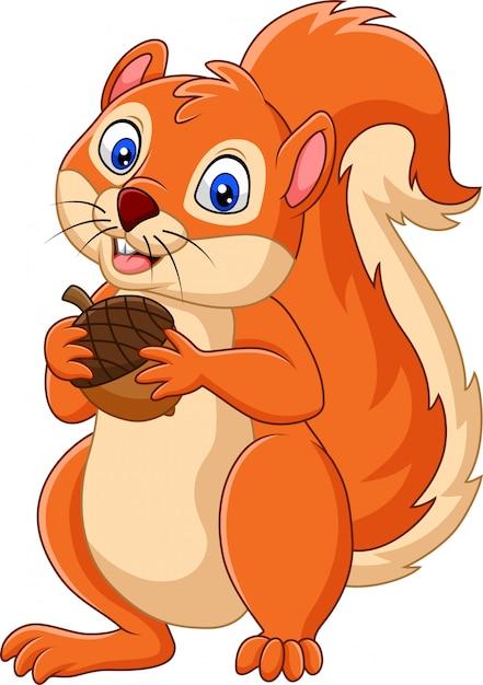 Cartoon squirrel holding nut Premium Vector