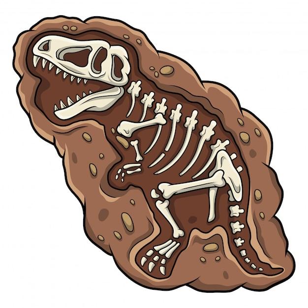 Cartoon t-rex dinosaur fossil Premium Vector