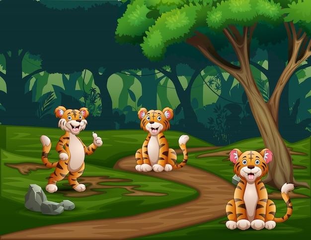 Cartoon three tigers enjoying at forest Premium Vector
