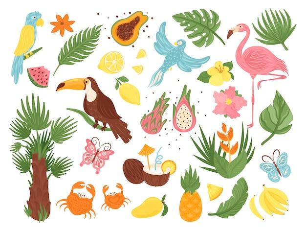 Набор иллюстраций мультяшных тропических экзотических элементов, коллекция с птицами из джунглей, листьями и цветами пальм, кокосовыми фруктами Premium векторы