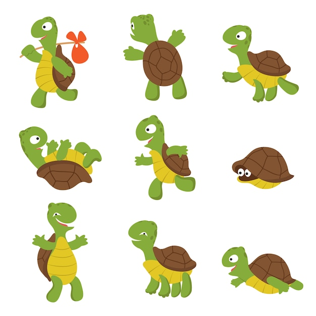 Cartoon turtle. cute tortoise wild animal  characters isolated Premium Vector