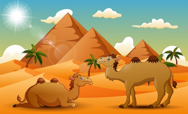 Cartoon of two camel in the desert Premium Vector