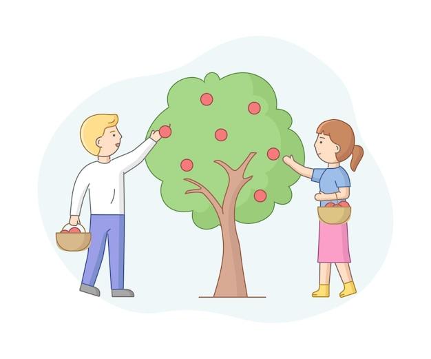Состав мультфильм вектор с мужскими и женскими персонажами собирать яблоки с дерева. концепция сезонного земледелия. в саду работают люди. объекты с контуром. Premium векторы