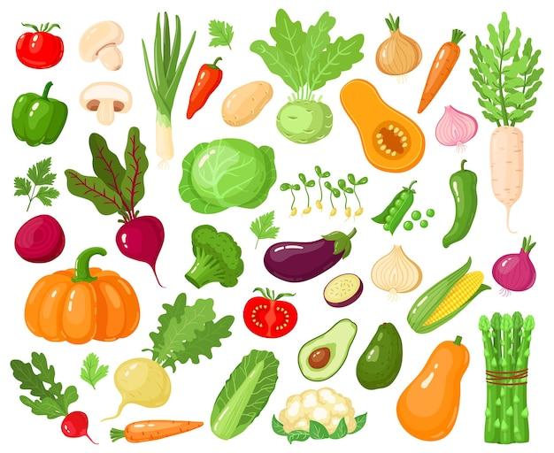 Мультяшные овощи. vegan veggies food, помидоры, тыква, цуккини и морковь, набор вегетарианских свежих сырых овощей иллюстрации иконок. вегетарианские цуккини и морковь, тыква овощная Premium векторы