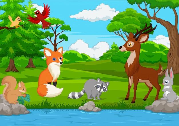 Cartoon wild animal in the jungle Premium Vector