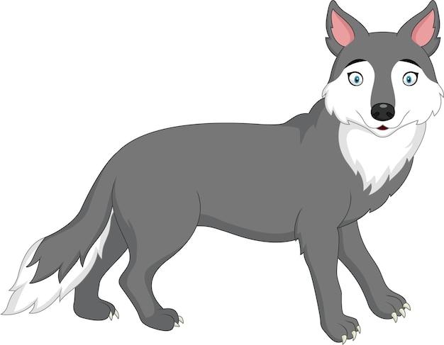 Cartoon wolf isolated on white background Premium Vector