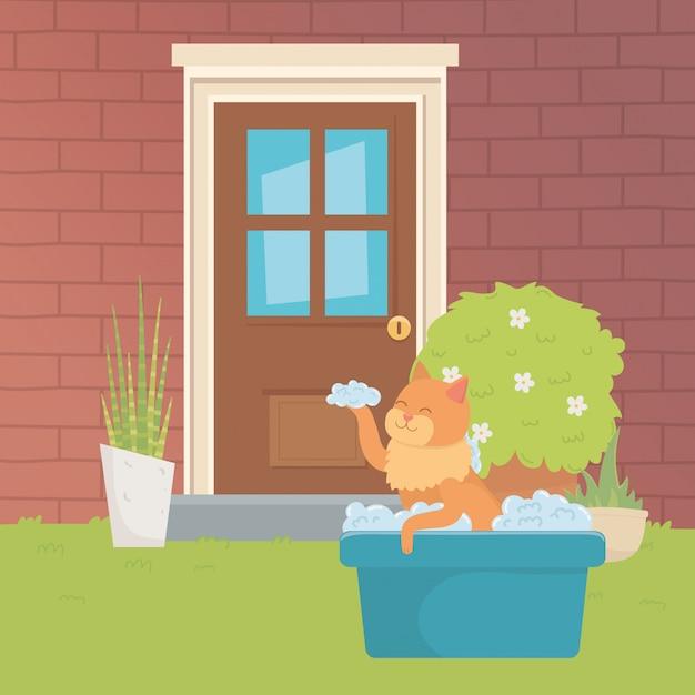 Cat cartoon design vector illustrator Free Vector
