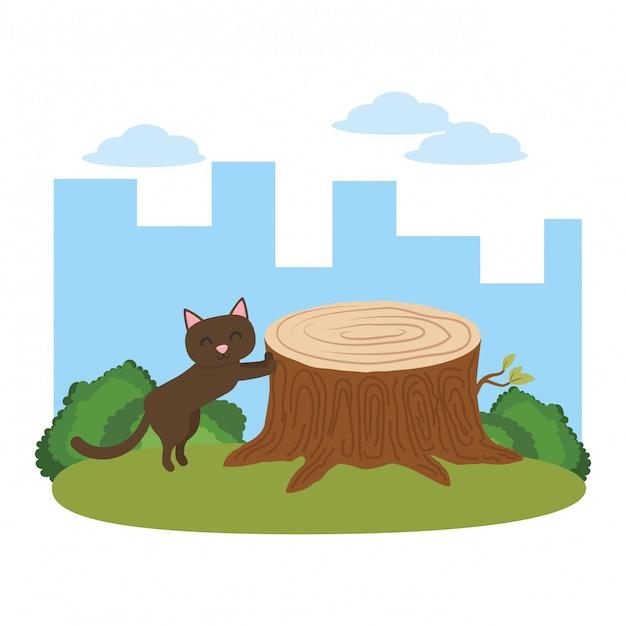 Cat cartoon Free Vector