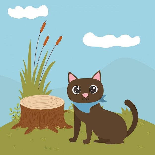 Cat of cartoon Free Vector