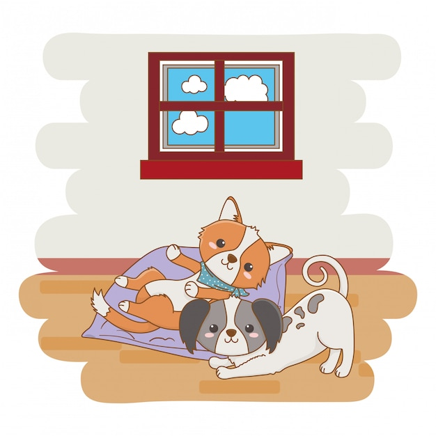 Cat and dog cartoon design Premium Vector