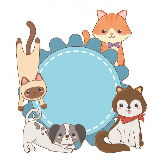Cats and dogs cartoons on rounded frame design Vector