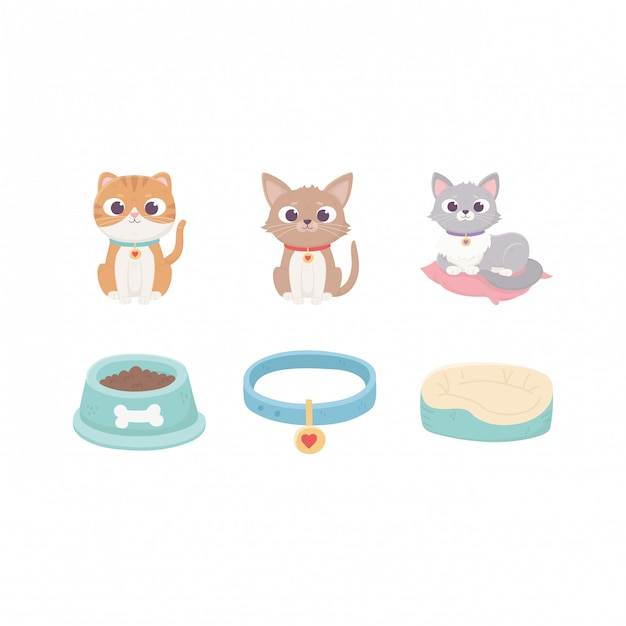 Cats with collar cushion food bowl, pets Premium Vector