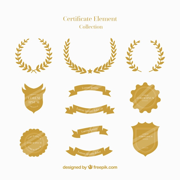 Certificate elements collection in flat style Premium Vector