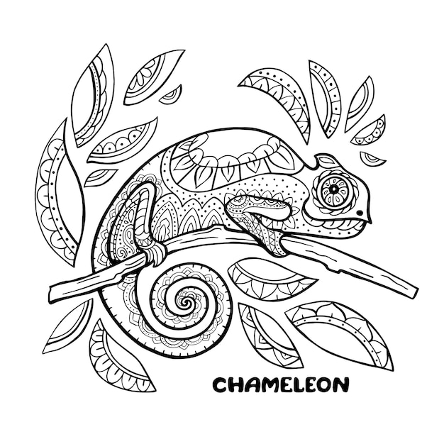 - Premium Vector Chameleon Coloring Book Illustration. Anti-stress Coloring  Pages. Black And White Lines.
