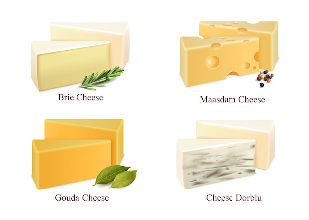 Cheese kinds set Free Vector