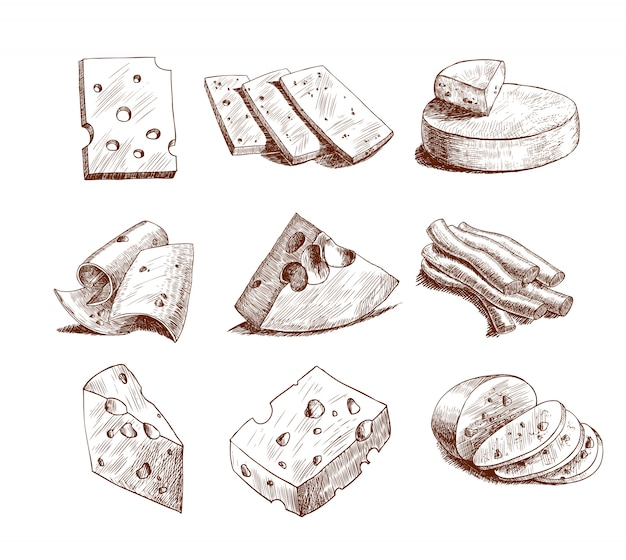 Cheese sketch collection Free Vector