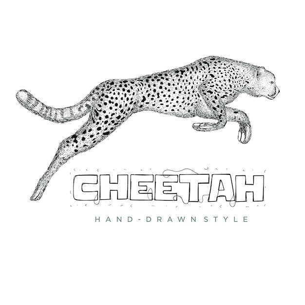 チーターは速く走っています。手描き動物イラスト Premiumベクター