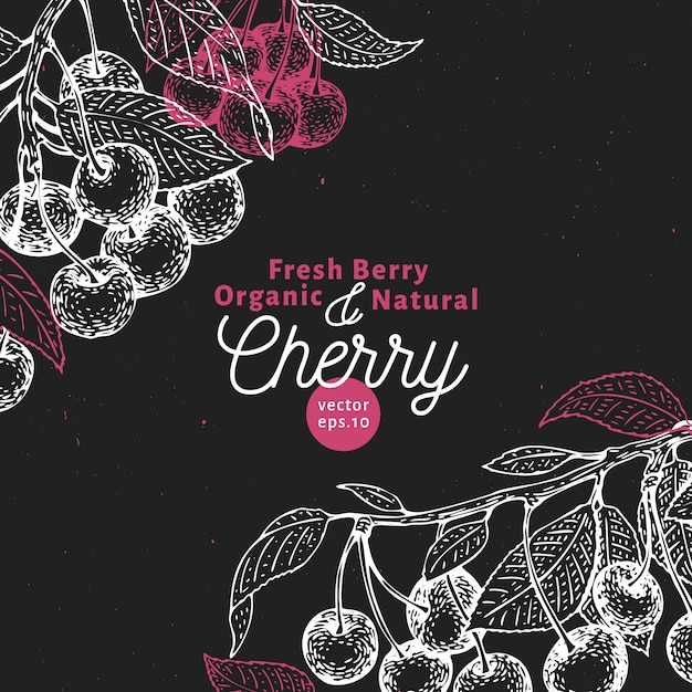 Cherry berry design template. hand drawn vector fruit illustration on chalk board. engraved style retro botanical background. Premium Vector