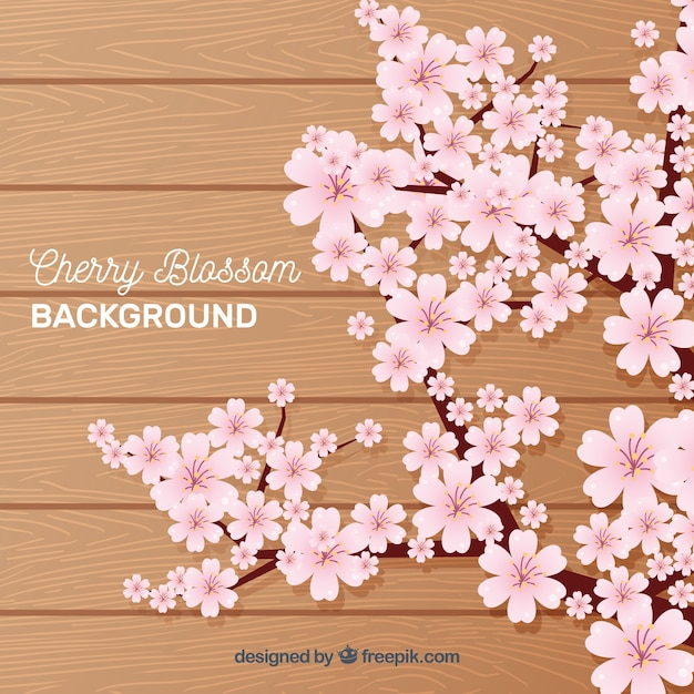 Cherry blossom backgorund in flat style Free Vector