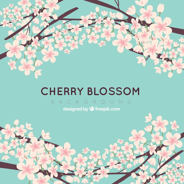 Cherry blossom backgroun in flat style Free Vector