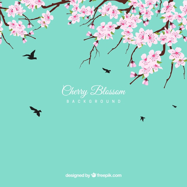 Cherry blossom background in flat design Free Vector