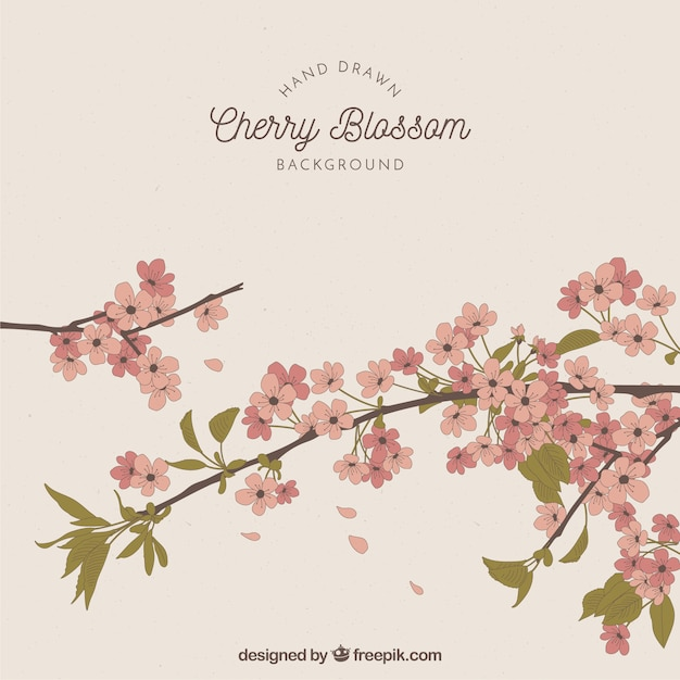 Cherry blossom background in hand drawn style Free Vector