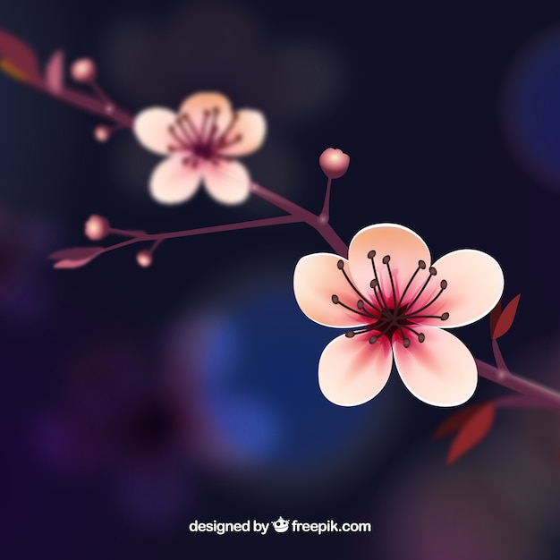Cherry blossom background in realistic style Free Vector