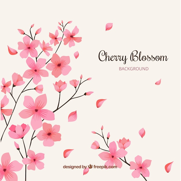 Cherry blossom background with hand drawn flowers Free Vector