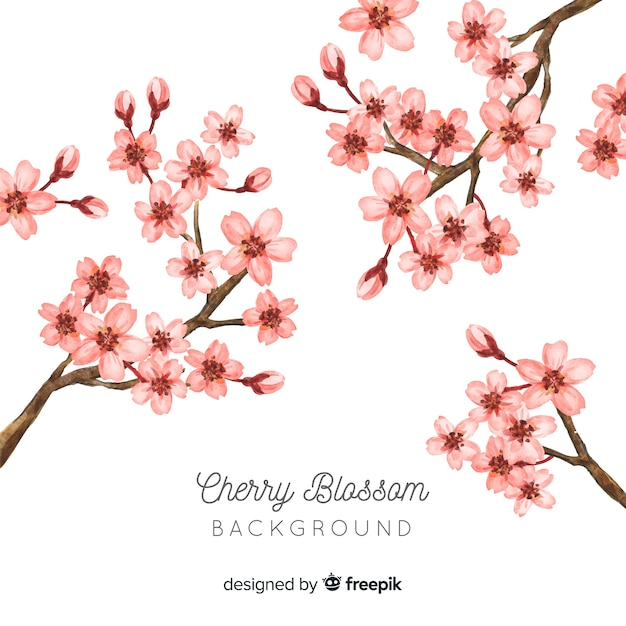 Cherry blossom background Free Vector