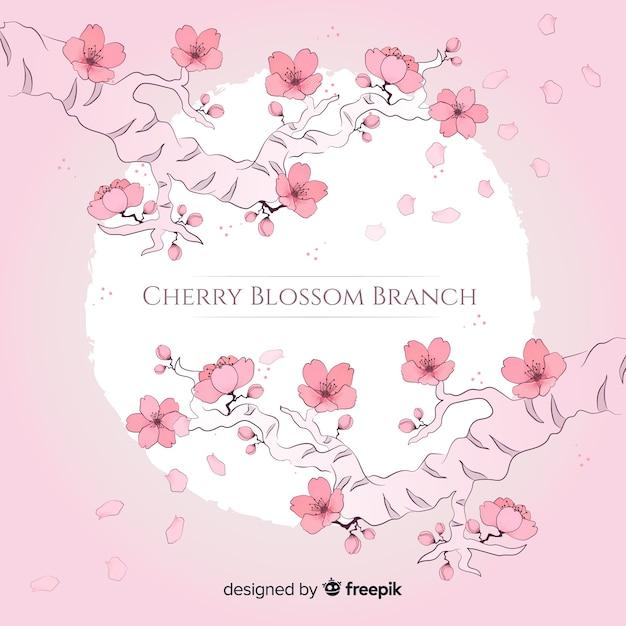 Cherry blossom branch Free Vector