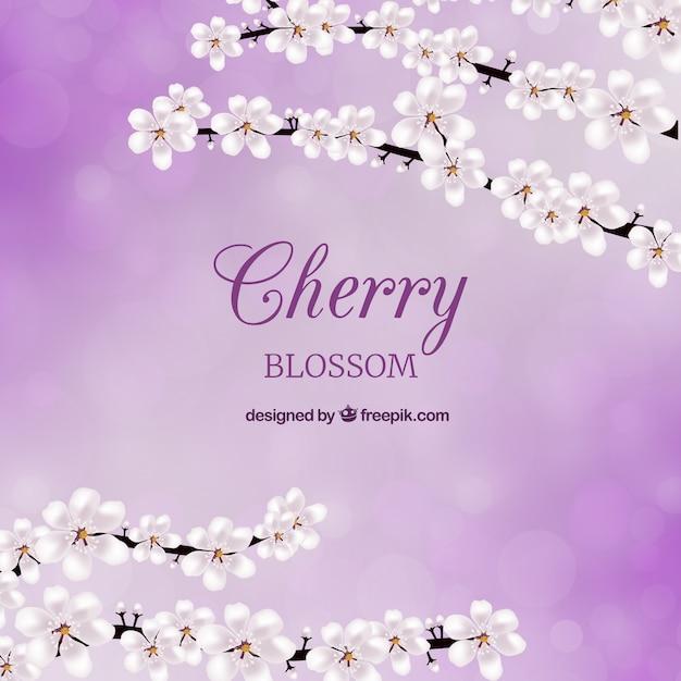 Cherry blossom card Free Vector