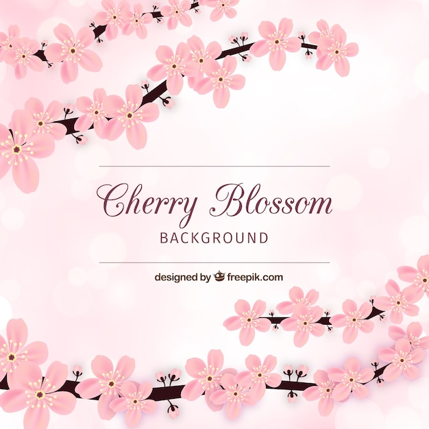 Cherry blossom card Free Vector