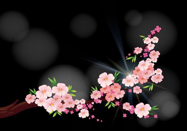 Cherry blossom flowers on branch vector premium download cherry blossom flowers on branch premium vector mightylinksfo