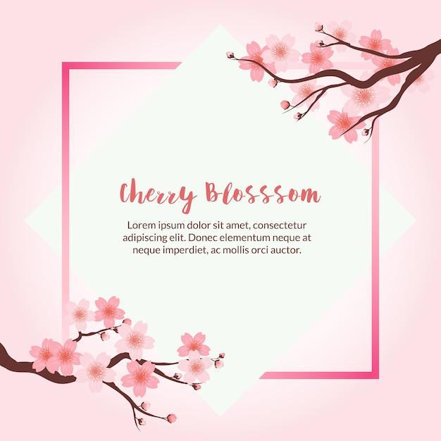 Background Bunga Sakura