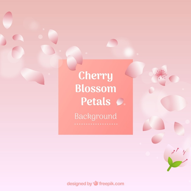 Cherry blossom petals background in gradient\ style