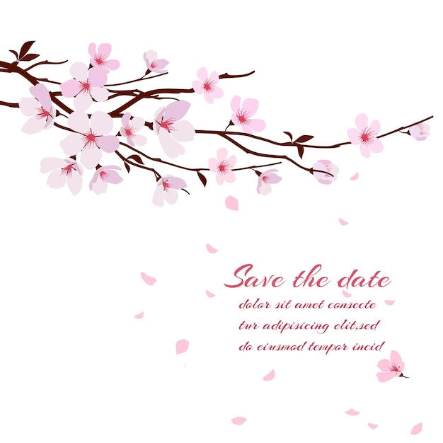 桜、ピンクの花の桜の枝。グリーティングカードテンプレート 無料ベクター