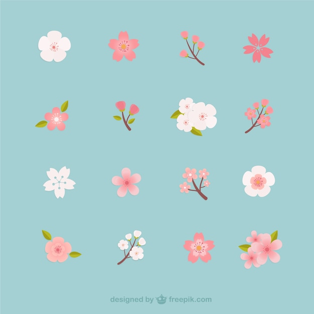 cherry blossoms collection vector free download rh freepik com cherry blossom graphic art cherry blossom tree graphic